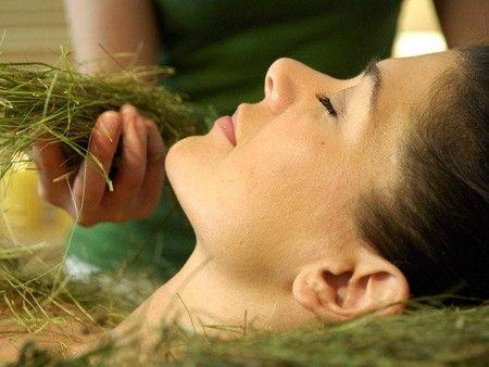 Маски для жирной кожи лица из трав