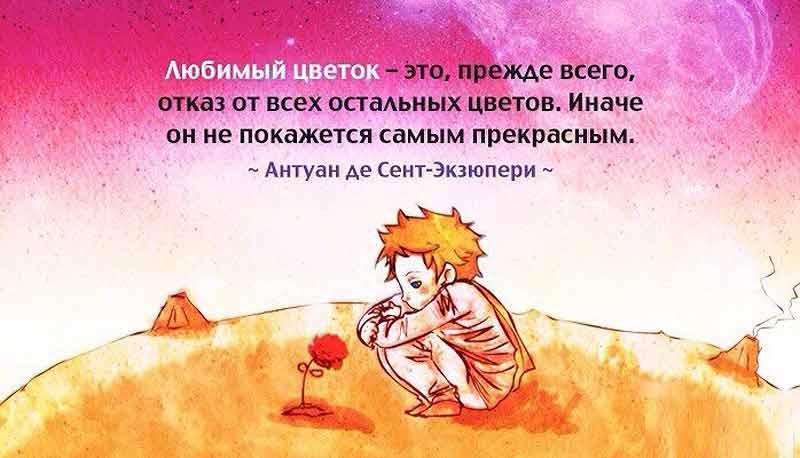 маленький принц цитаты