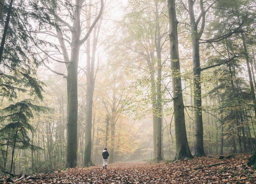 10 советов по выживанию