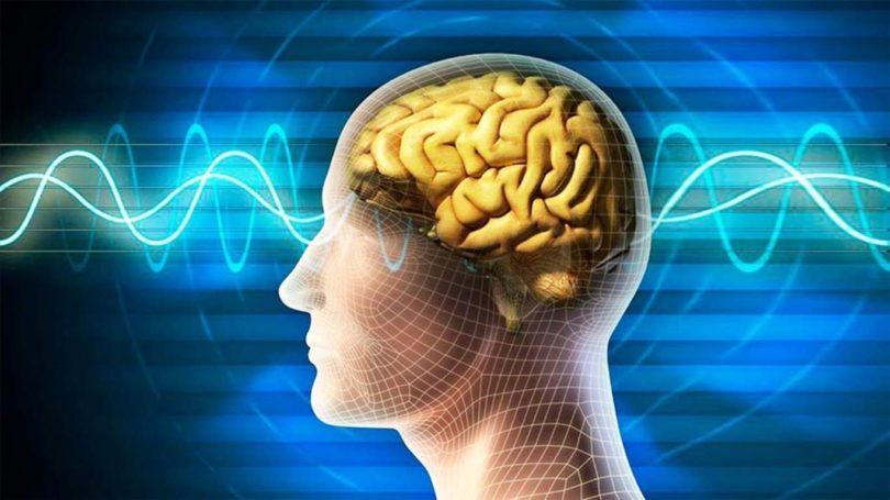 Учёные выяснили, почему во время депрессии мы теряем память