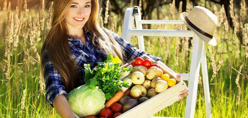 Штрафы для дачников за выращивание овощей